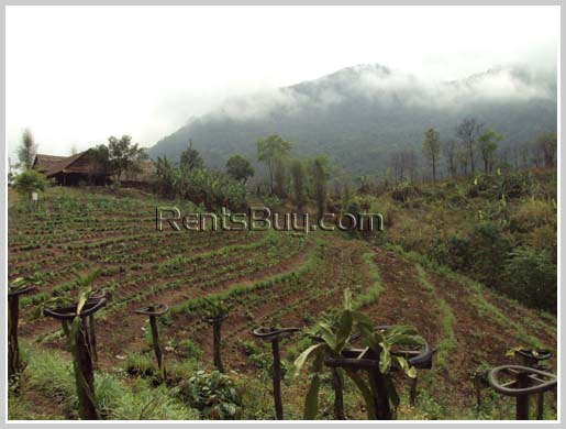 Argriculture, Resort potentials in Louangprabang
