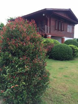 ID: 4140 - Lao style house with large garden in neigborhood of Logos College