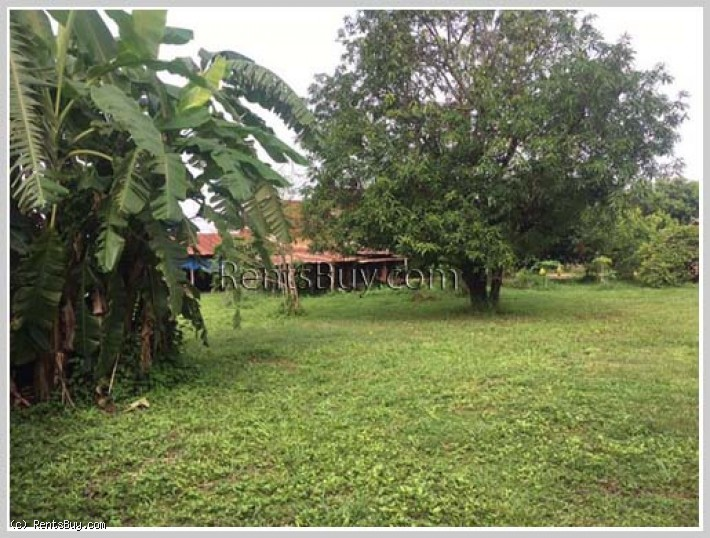 ID: 3704 - Village with large garden in Lao community near Dongmakkhai new city area