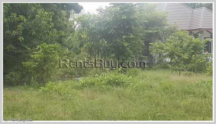 ID: 4186 - The large land in quiet area close to Huakua Market for rent