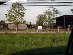 ID: 4490- Office and warehouse with large land by main road near National University of Laos for ren
