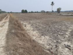 ID: 4435 - Agriculture land in km 31 for sale in Ban Borlek