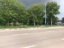 ID: 4521- Large land by main road near Lao-Thai Friendship Bridge for sale