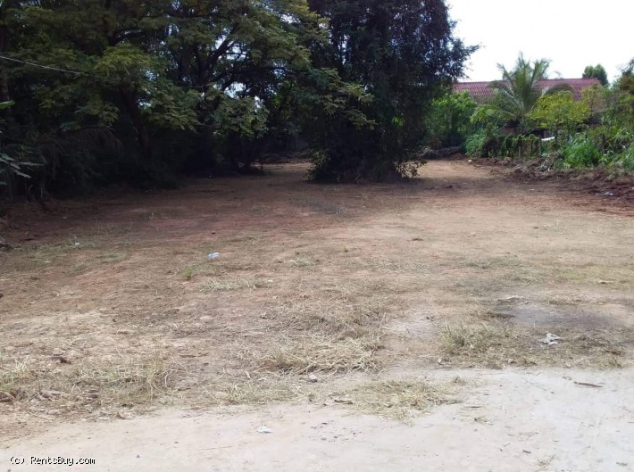 ID: 4245 - Surfaced land near 150 Tieng hospital for sale