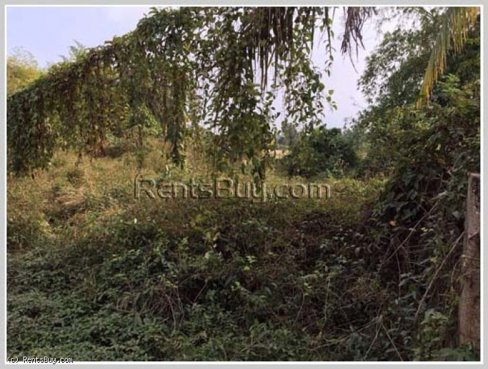 ID: 218 - Nice vacant land by pave road for sale at Ban Nonghai