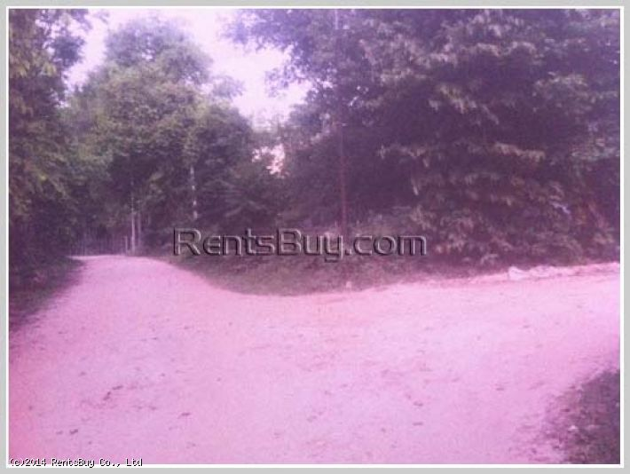 ID: 294 - Vacant land for sale in town not far from Beer Lao Factory