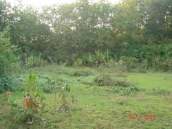 ID: 4230 - 2 hectare land near Luangprabang Airport by the bridge for hotel development