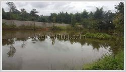 ID: 4355 - House with large land for sale in Ban Dongsiengdee