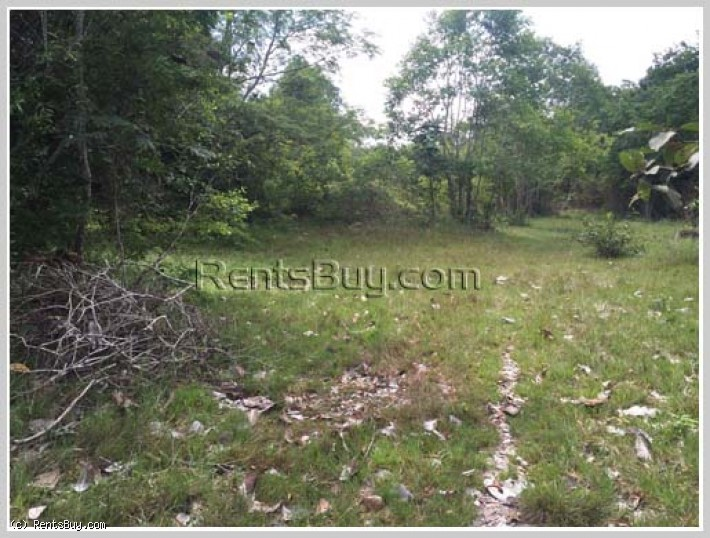 ID: 3658 - Vacant land next to concrete road for sale in Nakoun Tai Village