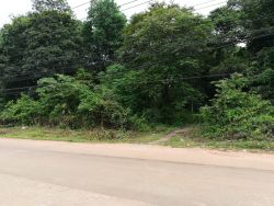 ID: 4176 - The large land next to main road in quiet area in Ban Somsaga for sale