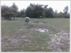 ID: 3516 - Nice vacant land not far from Tiger Beer Factory for sale