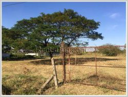 ID: 4270 - Surfaced land next to concrete road for sale in Ban Nongbuathong