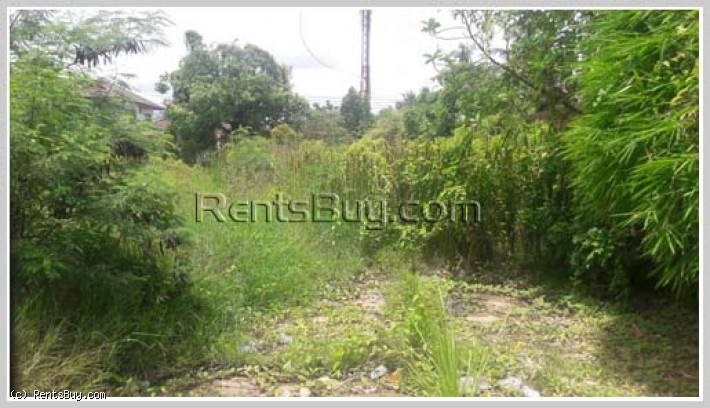 ID: 645 - Vacant land near main road for sale in Sisattanak district