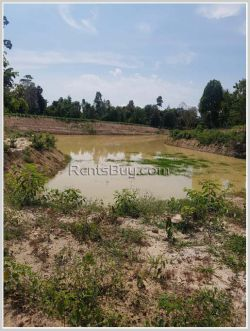 ID: 4237 - Agriculture land for sale in Phonhong District, Vientiane Province
