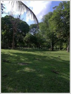 ID: 3670 - Vacant Shady land in new government administration center of Oudomphon Village for sale