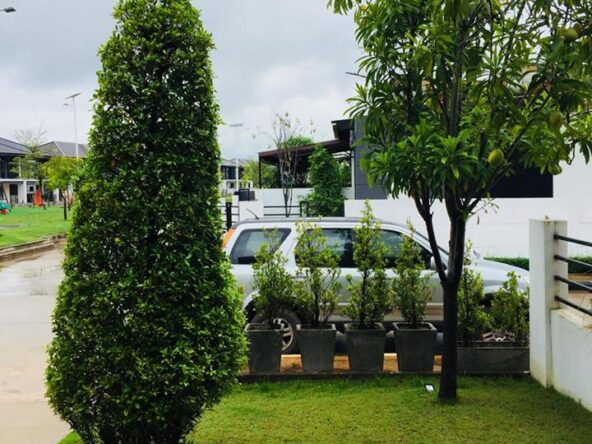 House-for-rent-Sikhottabong-Vientiane_Lao 12